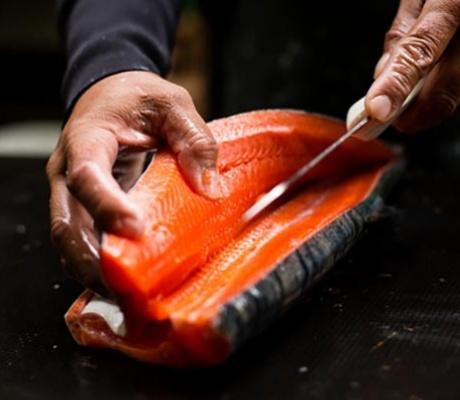 Recherche responsable de poissonnerie et apprenti en Dordogne