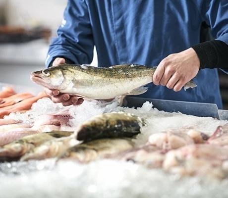 Recherche poissonnier : Poissonnerie Brochot, Ploumilliau (22) proche Lannion