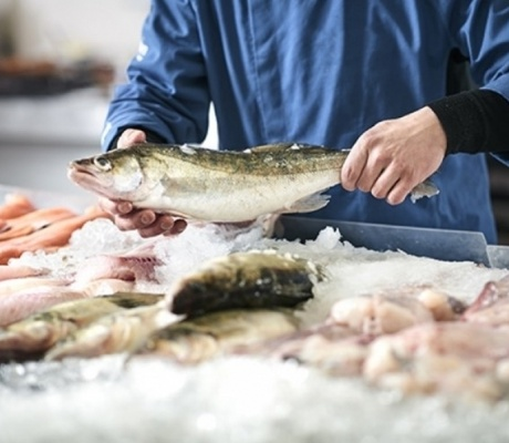 URGENT – recherche poissonnier(ère)s (dpt 17)